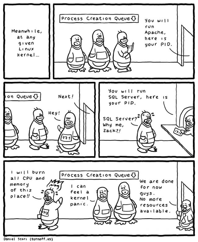 sql-server-se-linux
