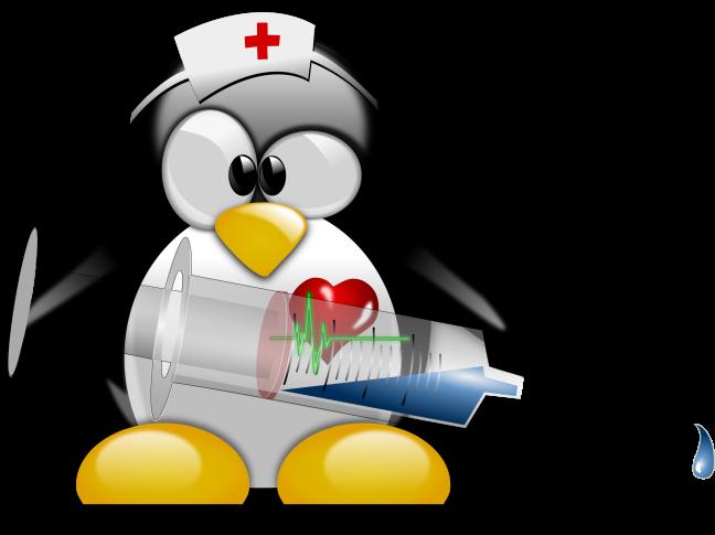 Ο νοσοκόμος tux δεν έχει και πολύ δουλειά να κάνει προκειμένου να κρατήσει το σύστημα μας υγιές. Εκτός αν πάρει δυσμενή μετάθεση σε pc με windows.