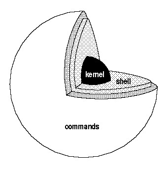bash-scripting-kernel-purinas-cerebrux-linux