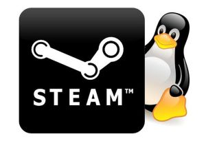 steam play proton linux